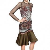 Etro Baumwoll Netz & Bedrucktes Viskose Cady Kleid