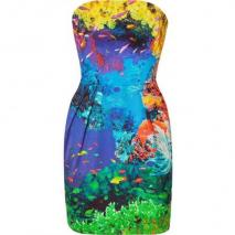 Mary Katrantzou Coral Reef Strapless Puff Dress